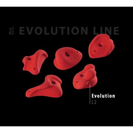 Evolution L2