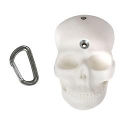 BONES - The Half Skull