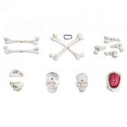 Bones Pack