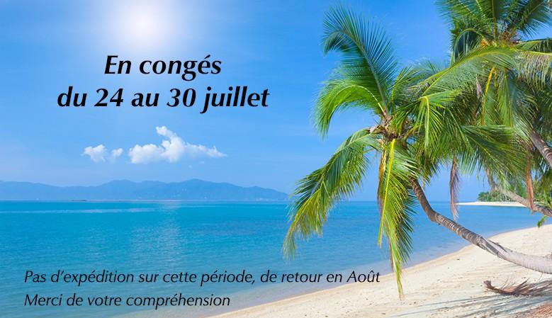 Congés d'été, fermeture temporaire du 24 au 30 juillet